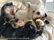 Hundetasche Rethink Animal Luxus Hunde Begleittasche