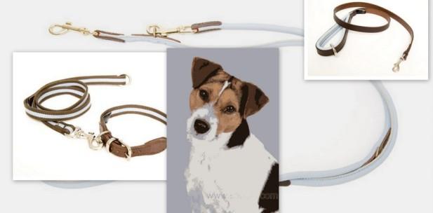 hunde luxus shop der hunde luxus shop bietet luxus f r hunde. Black Bedroom Furniture Sets. Home Design Ideas