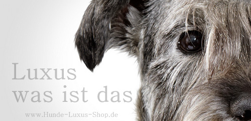 luxus f r hunde was ist das hunde luxus shop. Black Bedroom Furniture Sets. Home Design Ideas